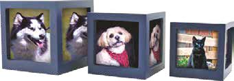 pet urn photocube blue