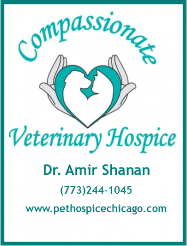 Compassionate Veterinary Care
